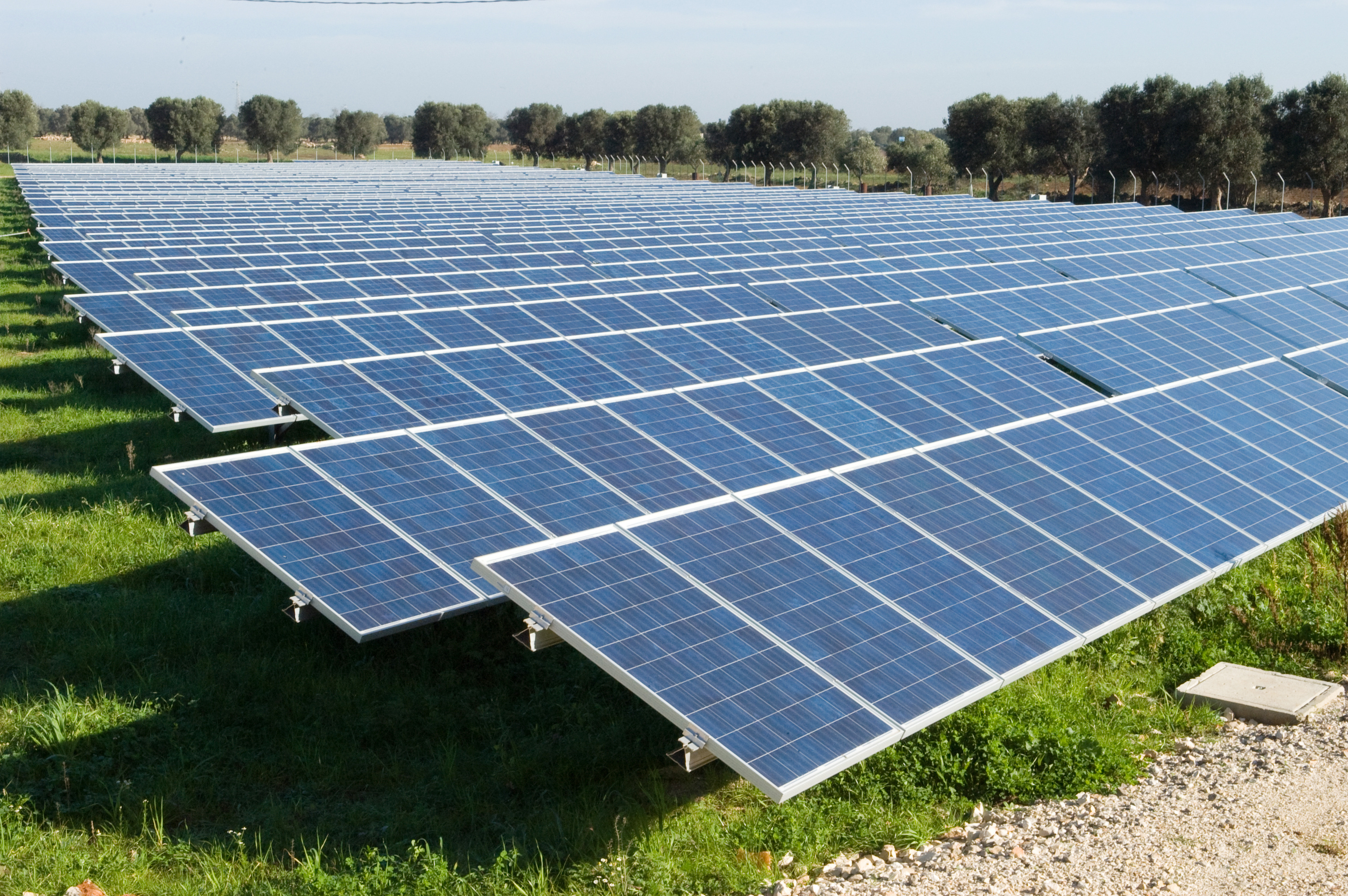 thesis on solar energy How to write any essay buying a term paper thesis solar energy as the main academic writing of dissertation/thesis from a database by contrast, the thesis solar energy magnitude differed in that sort of thing.